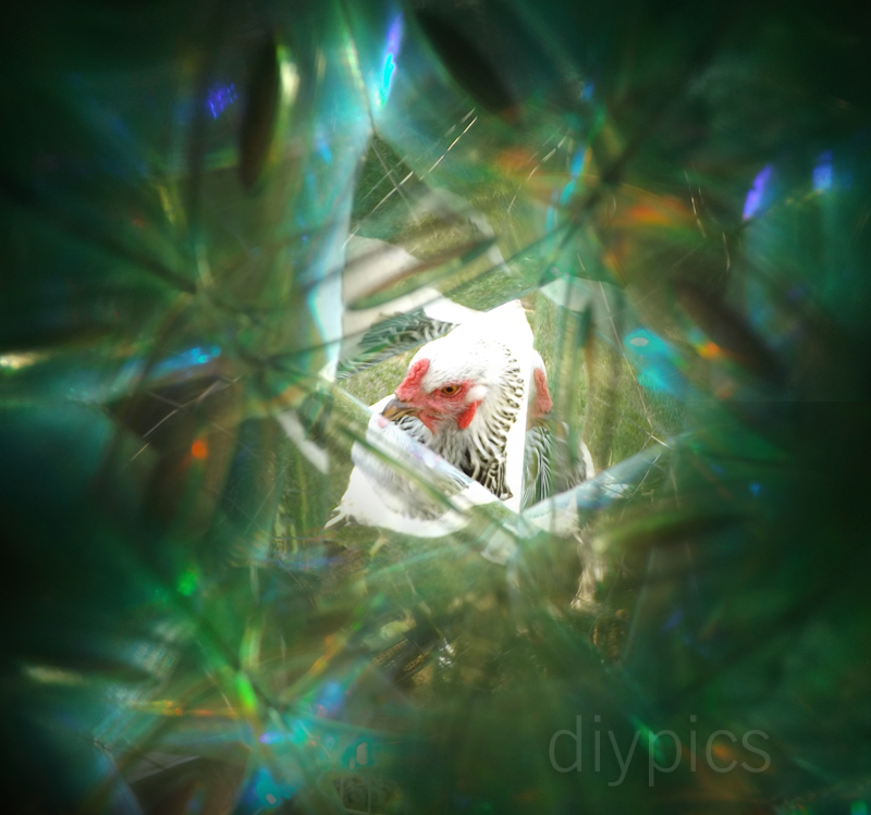 Make a Kaleidoscope Looking Glass