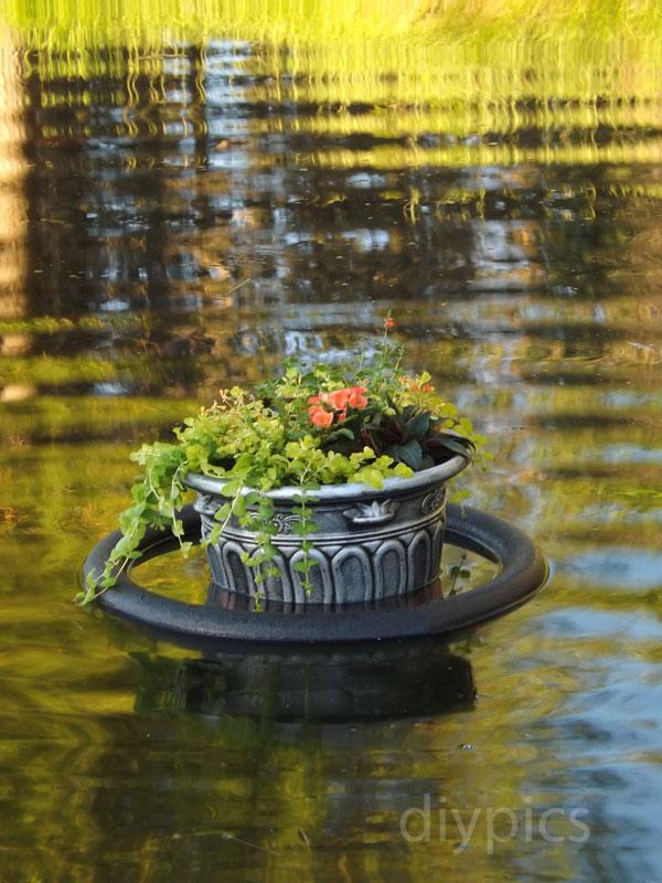 Floating Garden Diy Marta