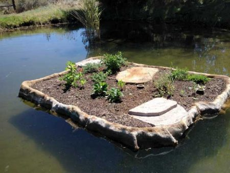 Planted floating island