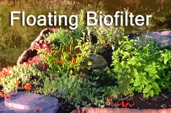 Floating Water Treatment Biofilter Island